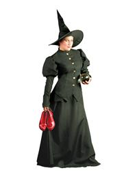 Witch Of West Costume