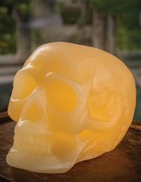 Memento Mori Skull Light