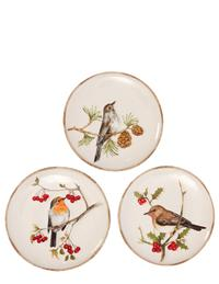 Wintertide Songbirds Plates From G G Collection