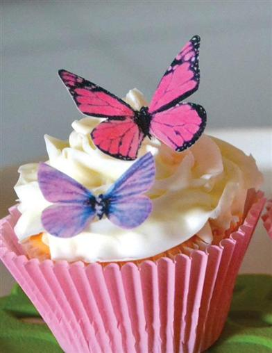 Edible Butterfly Dessert Toppers (Set Of 24)