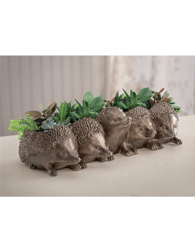 An Array Of Hedgehogs Planter
