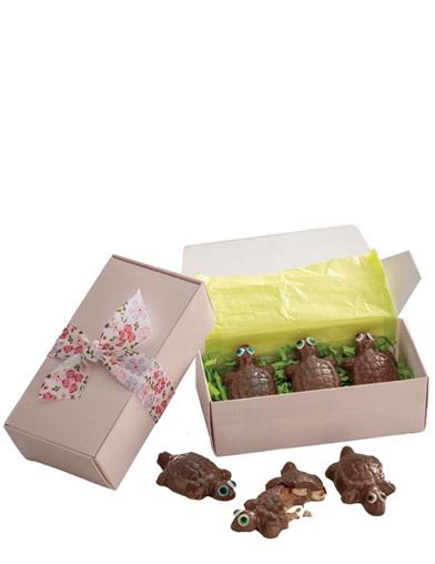 Tempting Terrapins Chocolate Turtles