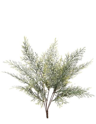 Frosted Juniper Spray