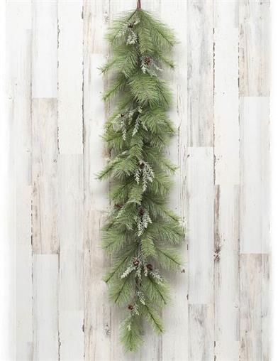 Snowy Pine Evergreen Bough