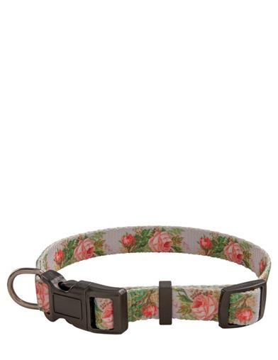 Rose And Rover Garden Dog Collar