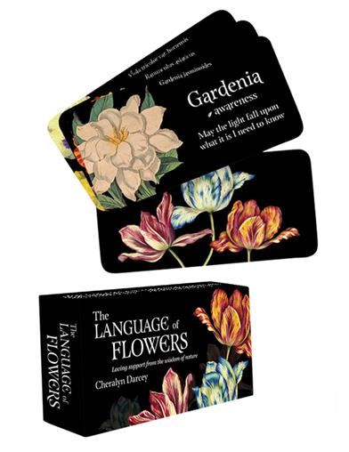 The Language Of Flowers Inspirational Card Set