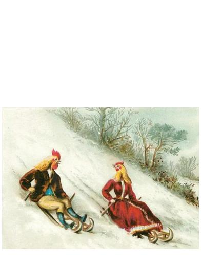 Poultry Sledding Christmas Card (Pkg Of 10)