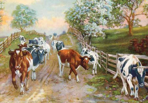 I'Ll Love You 'Til The Cows Come Home...